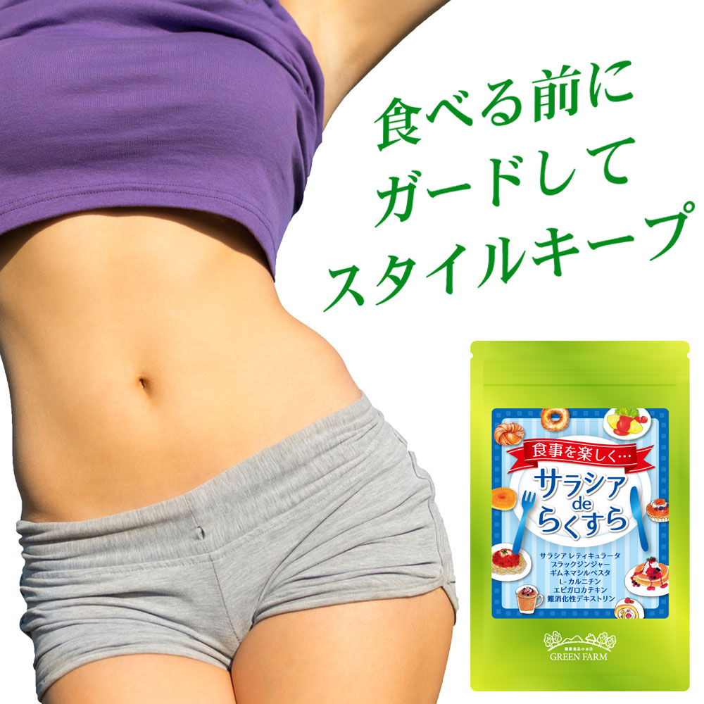 Wカットダイエット 糖も脂肪もダブルカット L-カルニチン ブラックジンジャー ギムネマ カテキン 食物繊維